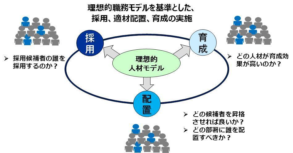理想的な人材モデル図